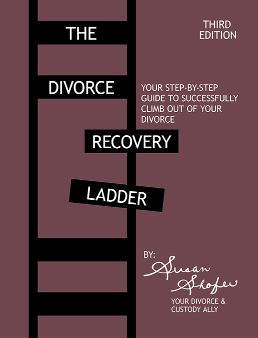 Divorce Recovery Ladder Guide Front Cover